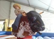 playandfunteam-Bull-Riding-02