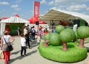 playandfunteam-e-bike-inflatable-forest-02