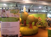 playandfunteam-e-bike-inflatable-forest-03
